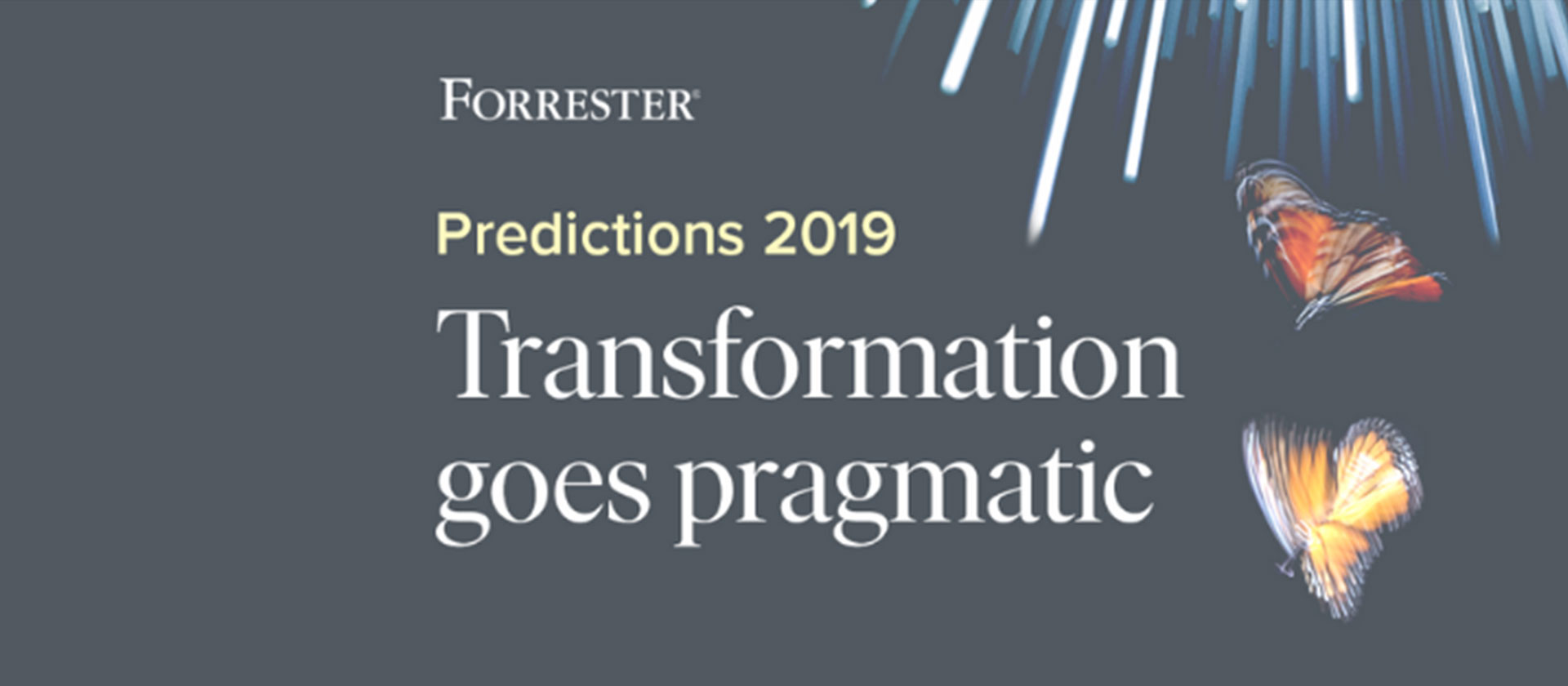 Forrester predictions 2019 annoucement